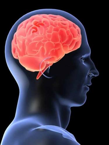 anestezi ve beyin hasarı
