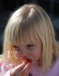 çocukların yeme problemi