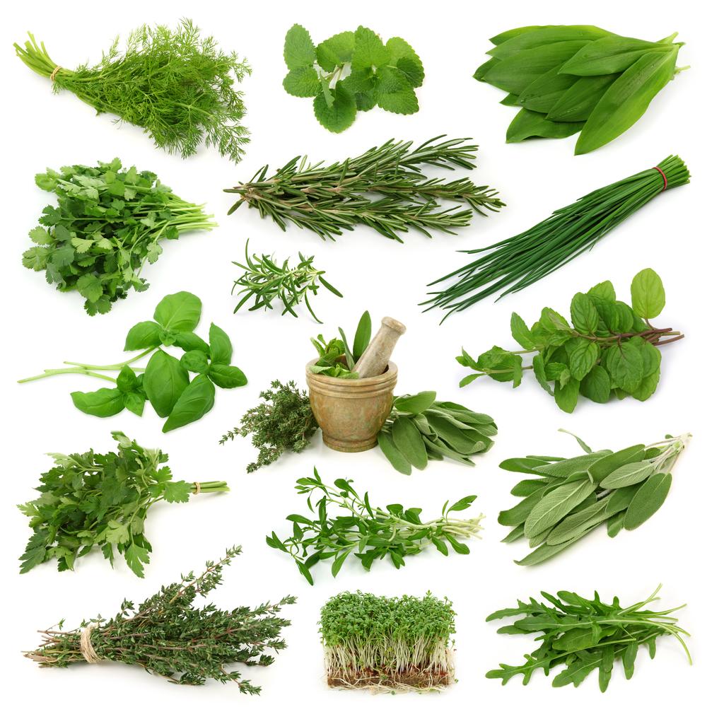 Bitkisel ilaçların zararları