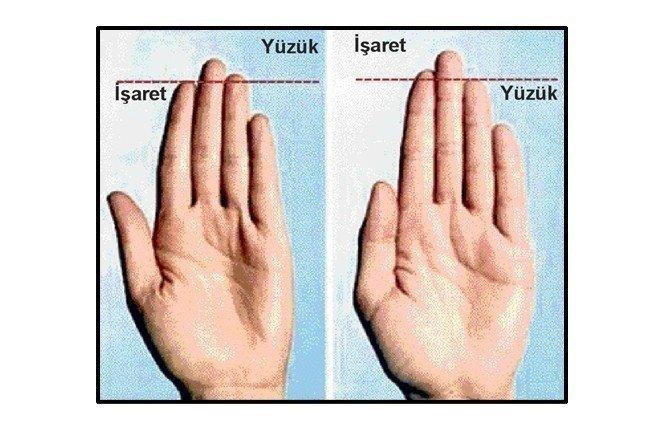 Muhabere parmağının boyu prostat kanseri belirtisi