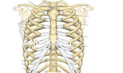 Göğüs kafesi niçin ağrır?